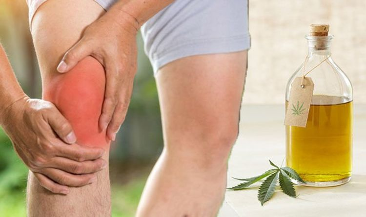 benefits of CBD for gout